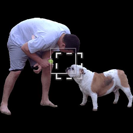 IE-mans-best-friend