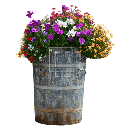 Flowers in Tall Wood Planter
